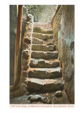 Old Steps, Mission Concepcion, San Antonio, Texas Poster
