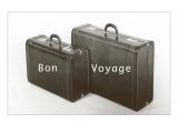 Suitcases, Bon Voyage Prints