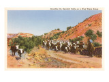 Cattle Roundup Prints