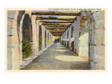 Covered Archway, Alamo, San Antonio, Texas Prints