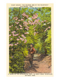 Wiley Oakley on Appalachian Trail, Gatlinburg, Tennessee Prints