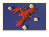 Lobster and Shells Print