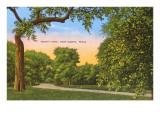 Trinity Park, Fort Worth, Texas Posters