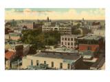 Overview of San Antonio, Texas Poster