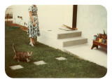 Tabby Cat on Lawn with Lady Poster