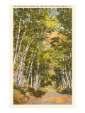 Ames Hill, Brattleboro, Vermont Prints