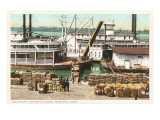 Loading Cotton on the Levee, Memphis, Tennessee Print
