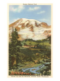 Rainier National Park, Washington Posters