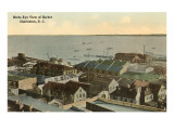 View of Harbor, Charleston, South Carolina Prints