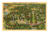 University of Virginia, Charlottesville, Virginia Posters