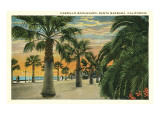 Palm Trees on Cabrillo Boulevard, Santa Barbara, California Posters