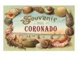 Souvenir from Coronado, California Poster