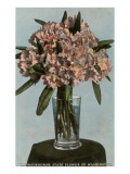 Rhododendrons in Vase, State Flower of Washington Posters