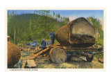 Logging Scene, Washington Prints