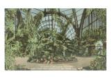 Botanical Building, Balboa Park, San Diego Prints