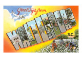 Greetings from Waterboro, South Carolina Prints