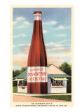 Giant Cranberry Cocktail Bottle Poster