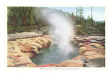 Oblong Geyser, Yellowstone National Park Poster