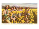 Daffodil Maidens, Puyallup Valley, Washington Prints