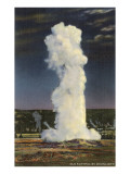 Old Faithful Geyser by Moonlight, Yellowstone National Park Posters
