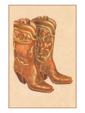 Fancy Cowboy Boots Poster