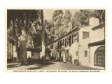 Eucalyptus at Biltmore Hotel, Santa Barbara, California Poster