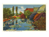 Lily Pond, Schenley Park, Pittsburgh, Pennsylvania Prints