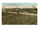 Model Farm, 1915 Exposition, San Diego, California Poster