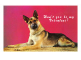Wont You be My Valentine Quizzical German Shepherd Posters