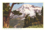 Rainier-Nationalpark, Washington Poster