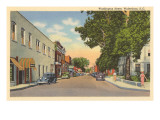 Washington Street, Walterboro, Charleston, South Carolina Prints