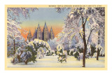 Mormon Temple in Winter, Salt Lake City, Utah Posters