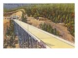 Bender Bridge, West Virginia Prints