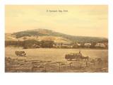 Vermont Hay Field, Vermont Prints