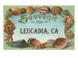 Souvenir from Leucadia, California Posters