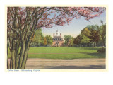 Palace Green, Williamsburg, Virginia Poster