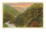 Blackwater-Canyon, West-Virginia Kunstdruck