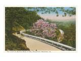 Landschaftliche schöne Bergstraße, Roanoke, Virginia Poster