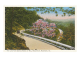 Strada panoramica tra le montagne, Roanoke, Virginia Poster