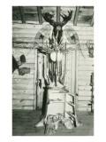 Moose Head, Snowshoes, Trunk Cabinet Art