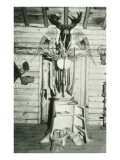 Moose Head, Snowshoes, Trunk Cabinet Print