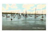 Boats at Anchor, Newport Harbor, Rhode Island Poster