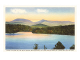 Lake Lanier, South Carolina Poster