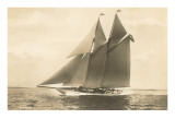 Gaff-Rigged Schooner Prints