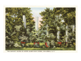 Millwood, Columbia, South Carolina Prints