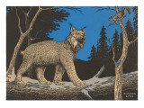 Woodcut of Canada Lynx Art