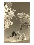 Airborne Skier Amid Frost-Laden Trees Affiches