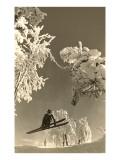 Airborne Skier Amid Frost-Laden Trees Kunstdrucke