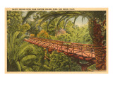 Bridge over Palm Canyon, Balboa Park, San Diego, California Print