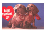 Happy Valentines Day, Two Dachshunds Posters